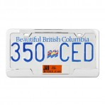 Plain 2-Hole License Plate Frames with Center Cut