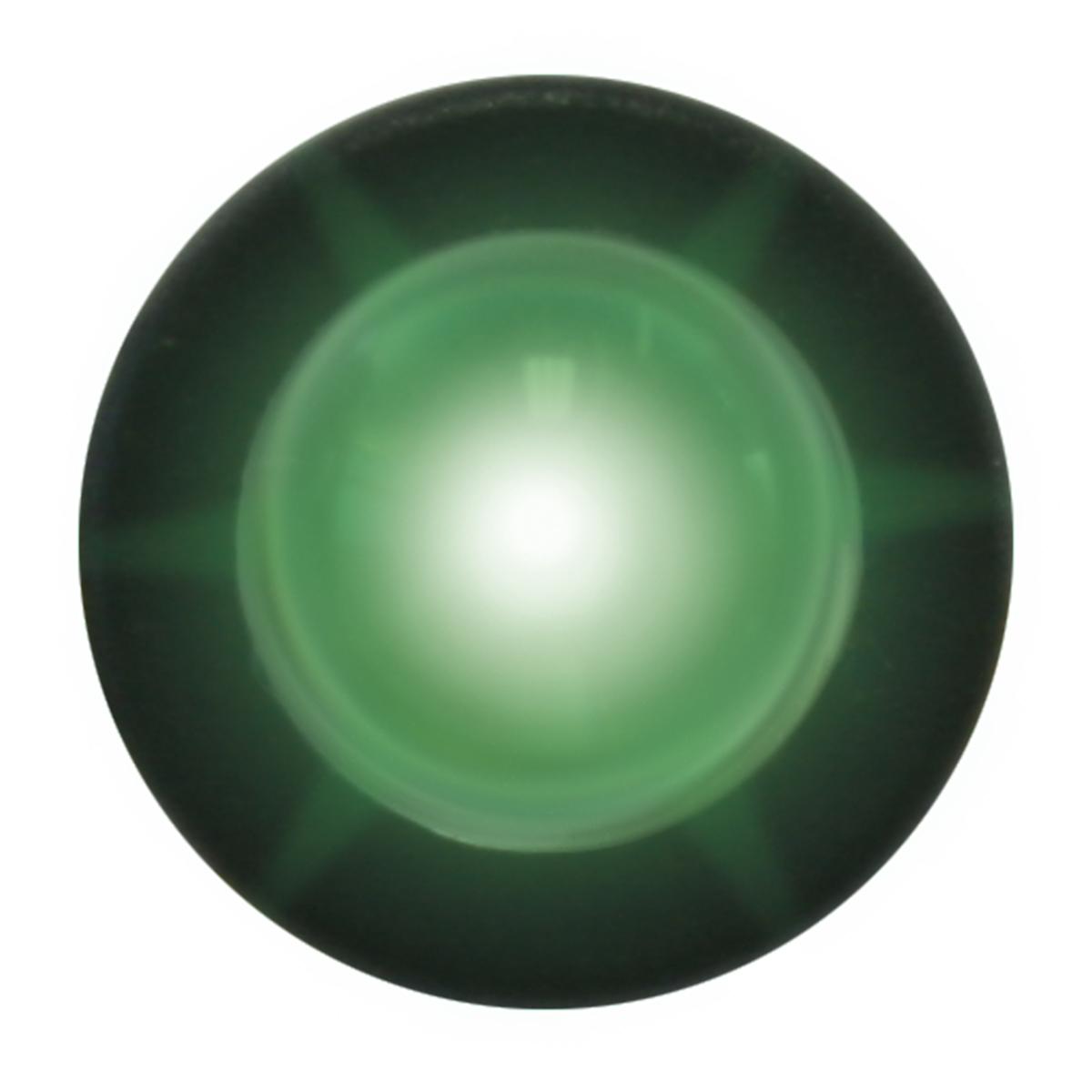 81253 Green Interior Single LED Snake Light, Unlit