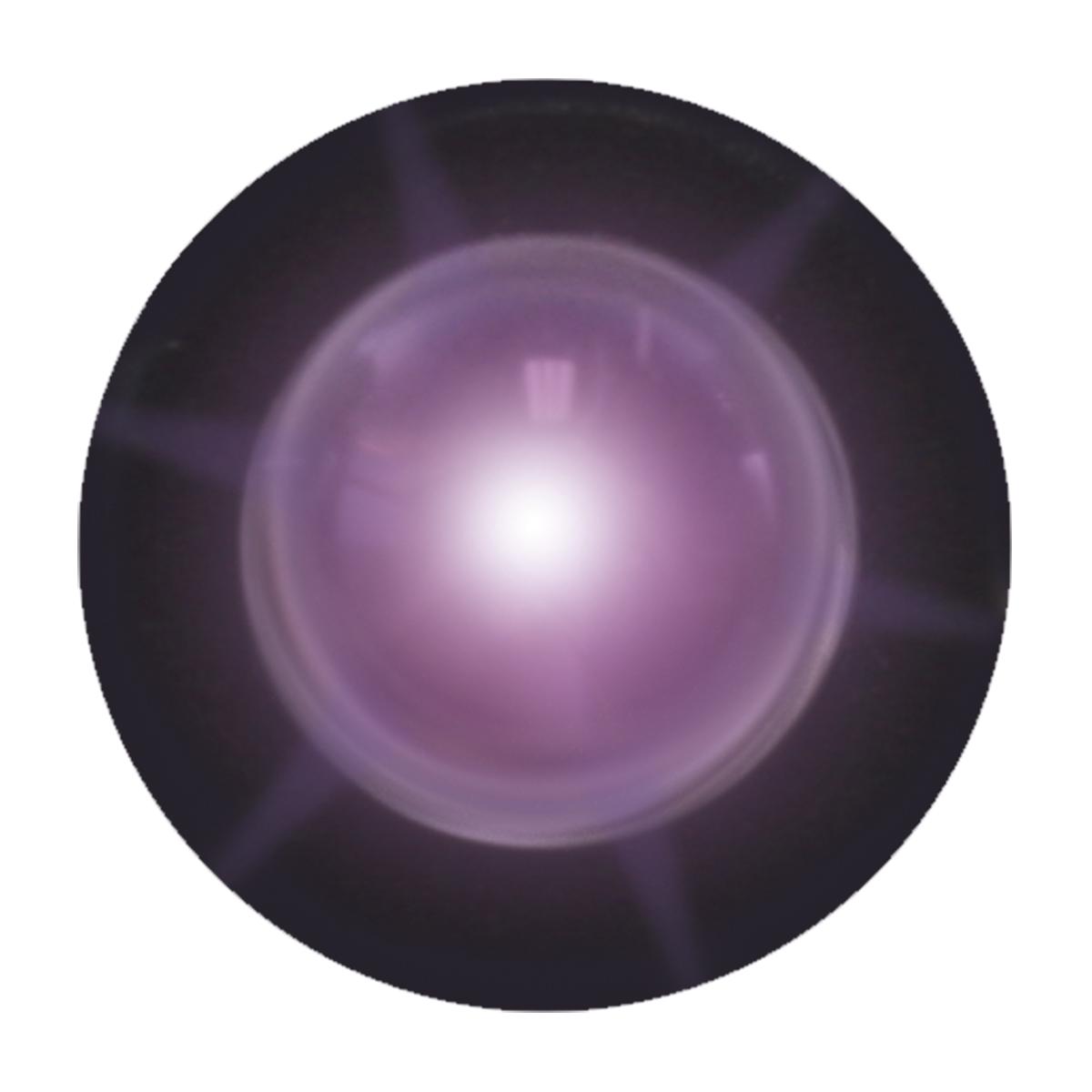 81254 Purple Interior Single LED Snake Light, Unlit