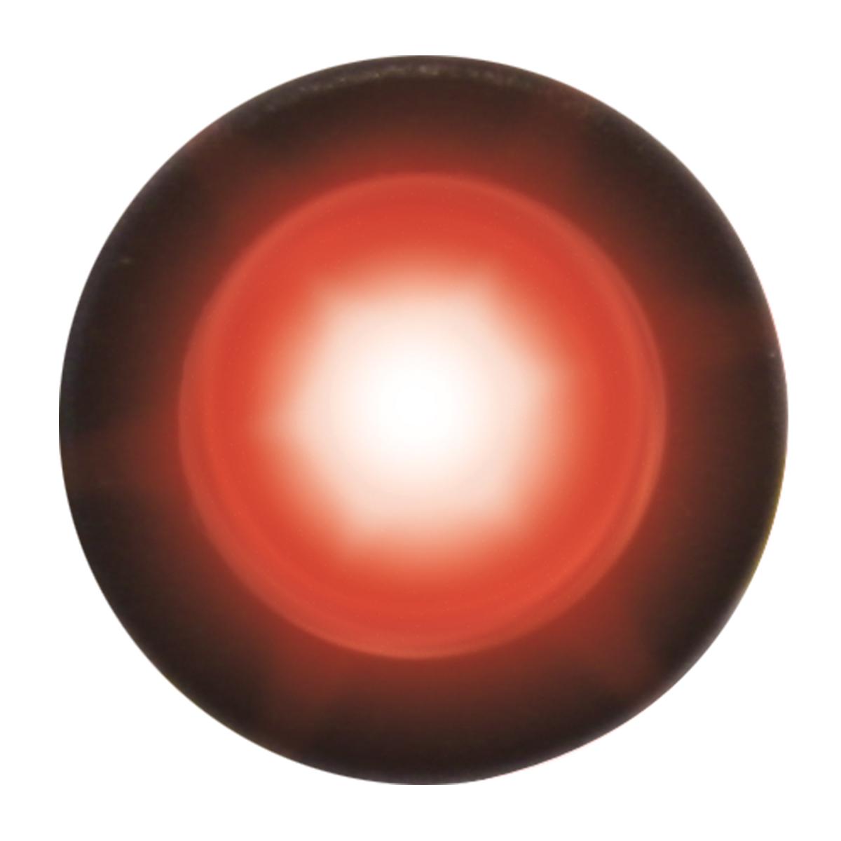 81255 Red Interior Single LED Snake Light, Unlit