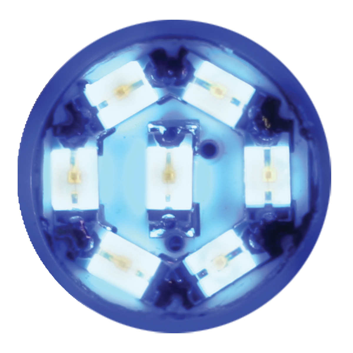 74901 Blue 194/168 Dome Type 7 LED Light Bulb